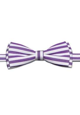 Noeud Papillon Lilas